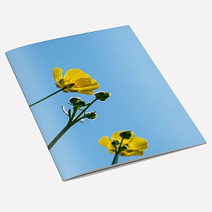 Buttercup Notebook A6