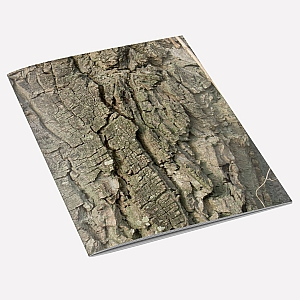 view Walnut Tree Bark A6 Notebook details