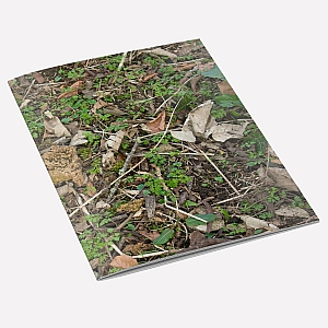 view Woodland Floor A6 Notebook details