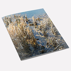 view Winter Rushes A6 Notebook details