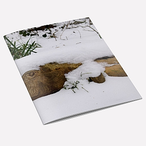 Snow Fish A6 Notebook