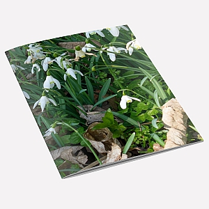 view Snowdrops Notebook details