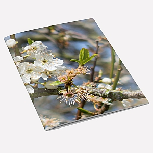 Hawthorn A6 Notebook