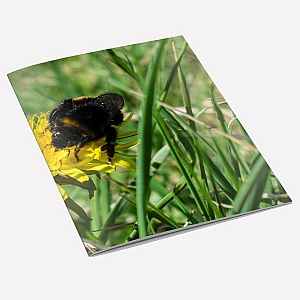 Bumblebee Notebook