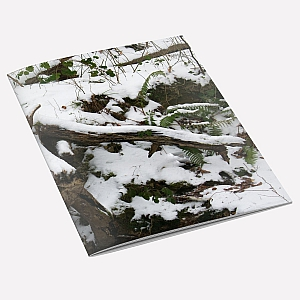 Snow Tree A6 Notebook