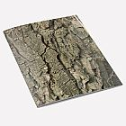 Walnut Tree Bark A6 Notebook