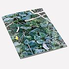 Frosty Leaves A6 Notebook