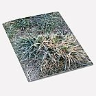 Frosty Grass A6 Notebook