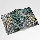Frosty Grass Notebook